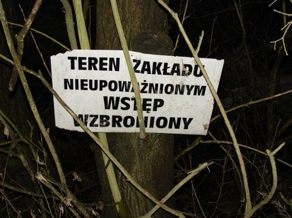 Dąbrowa - zdjęcia z lat 2009 - 2010