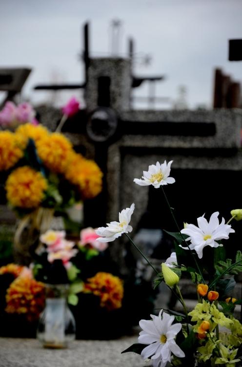 Cmentarz w Masłowie -  2012r.