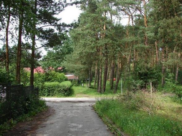 ul.Leśna, Wola Kopcowa. 2009r.