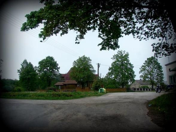 Klonów, gmina Łączna. Maj 2009r.