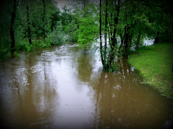 Powódź 2010r. Borków, Marzysz, Morawica