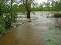 Woda zalewa łąki i posesje - 17.05.2010r.